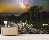 Daisies Under A Starlit Sky mural wallpaper living room preview