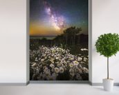 Daisies Under A Starlit Sky mural wallpaper in-room view