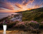 Sunset Flowers With A Lighthouse Shining In The Distance wall mural kitchen preview