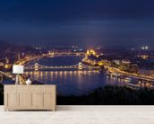 Budapest at Night mural wallpaper living room preview