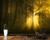 Yellow Light wall mural kitchen preview