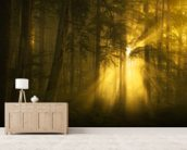 Yellow Light wall mural living room preview