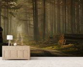 A Forest Walk wallpaper mural living room preview