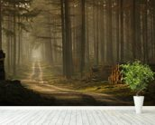 A Forest Walk wallpaper mural in-room view