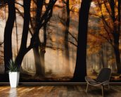 Autumn Light mural wallpaper kitchen preview