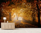 Turn to Fall wallpaper mural living room preview