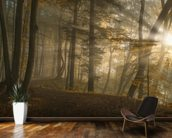 Forest Light wall mural kitchen preview