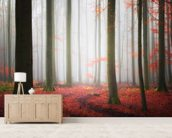 Autumnal Tracks wallpaper mural living room preview