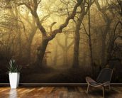Forest Dawn wallpaper mural kitchen preview