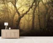 Forest Dawn wallpaper mural living room preview