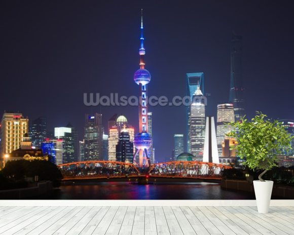 Pudong Shanghai mural wallpaper room setting