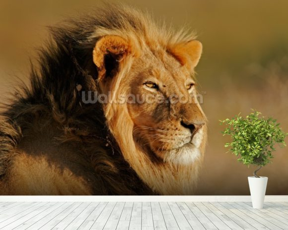 Lion wall mural room setting