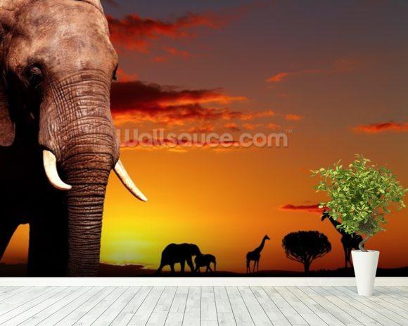 African Safari Wallpaper Wall Mural Wallsauce USA
