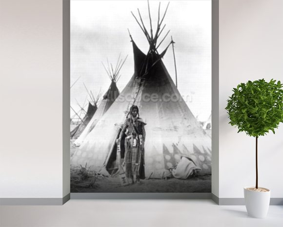 Blackfoot Brave, near Calgary, Alberta, 1889 (b/w photo) wallpaper mural room setting