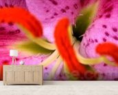 Pink Aroma (colour photo) wall mural living room preview
