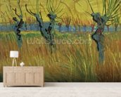 Pollarded Willows and Setting Sun, 1888 (oil on card) wall mural living room preview