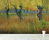 Pollarded Willows and Setting Sun, 1888 (oil on card) wall mural in-room view
