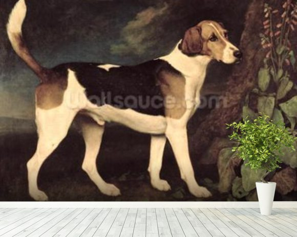 Ringwood, a Brocklesby Foxhound, 1792 (oil on canvas) mural wallpaper room setting