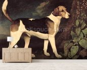 Ringwood, a Brocklesby Foxhound, 1792 (oil on canvas) mural wallpaper living room preview