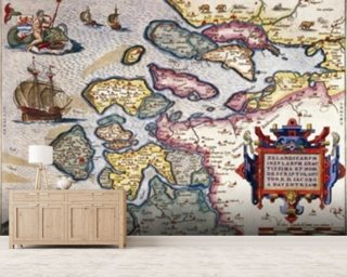 Map of Zeeland, c.1560 (hand coloured engraving) wall mural