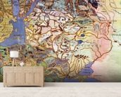 Map of Central Europe, from the Sala Del Mappamondo (Hall of the World Maps) (fresco) wall mural living room preview
