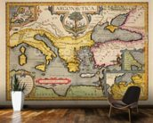 Map of the Voyage of the Argonauts, from the Theatrum Orbis Terrarum, 1603 (coloured engraving) mural wallpaper kitchen preview