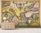 Map of the Voyage of the Argonauts, from the Theatrum Orbis Terrarum, 1603 (coloured engraving) mural wallpaper living room preview