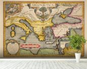 Map of the Voyage of the Argonauts, from the Theatrum Orbis Terrarum, 1603 (coloured engraving) mural wallpaper in-room view