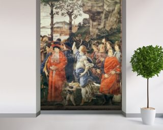 Botticelli, Sandro Wall Murals Wallpaper