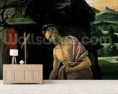 St. Jerome, 1490s (tempera on panel) wallpaper mural living room preview