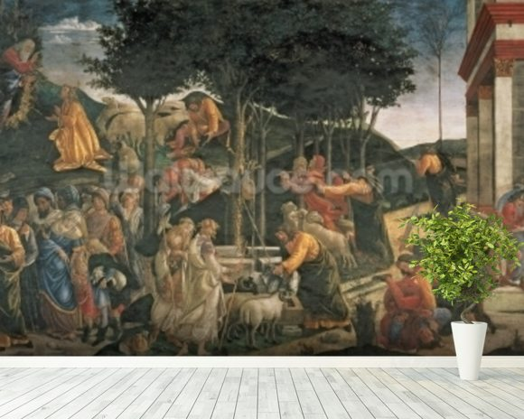 The Youth of Moses, in the Sistine Chapel, 1481 (fresco) (for detail see 315896) wallpaper mural room setting