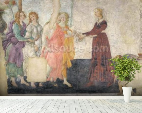 Venus and the Graces offering gifts to a young girl, 1486 (fresco) (for detail see 315895) mural wallpaper room setting