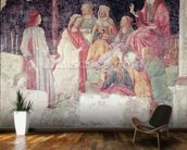 Young Man Greeted by Seven Liberal Arts, from the Villa Lemmi (fresco) wallpaper mural kitchen preview