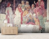 Young Man Greeted by Seven Liberal Arts, from the Villa Lemmi (fresco) wallpaper mural living room preview