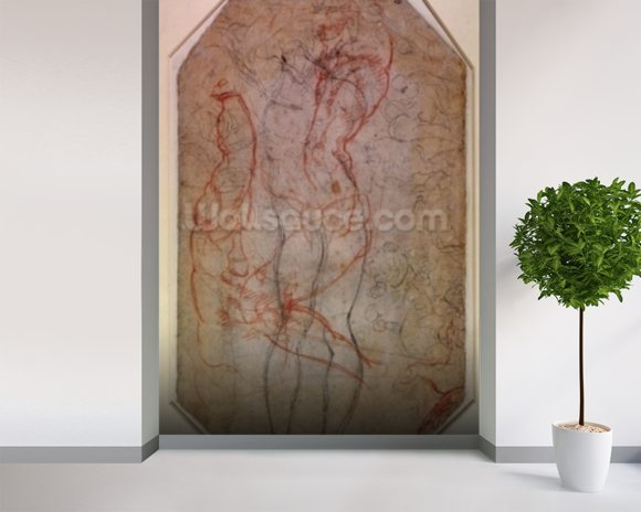 Study of Figures and the Creation of Adam (pencil & red chalk on paper) (verso) mural wallpaper room setting