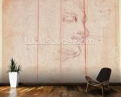Study for the Head of the Libyan Sibyl (black chalk on paper) (verso) wallpaper mural kitchen preview