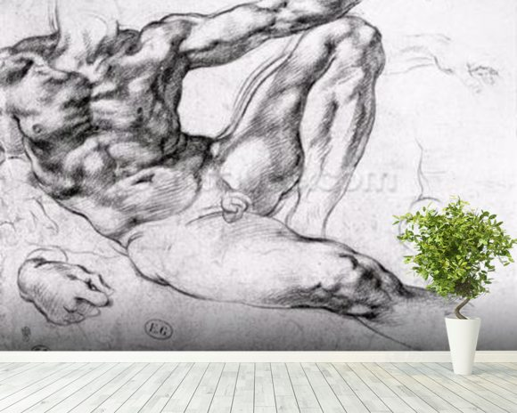 Study for the Creation of Adam (pencil on paper) (b/w photo) wall mural room setting