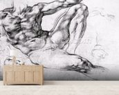 Study for the Creation of Adam (pencil on paper) (b/w photo) wall mural living room preview