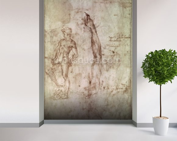 Study for David (pen & ink on paper) wallpaper mural room setting