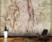 Study for David (pen & ink on paper) wallpaper mural kitchen preview