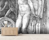 Nude looking at Herself in a Mirror, print made by Monogrammist M, c.1530-80 (engraving) wallpaper mural living room preview
