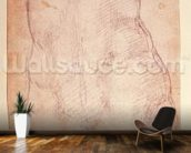 Study of the back of a nude figure (black chalk on paper) (verso) wallpaper mural kitchen preview