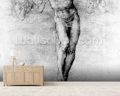 Christ on the Cross (chalk on paper) wallpaper mural living room preview