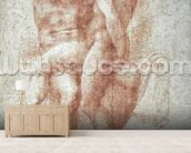 Nude female seated on the knees of a seated male nude: Adam and Eve (sanguine on paper) wall mural living room preview
