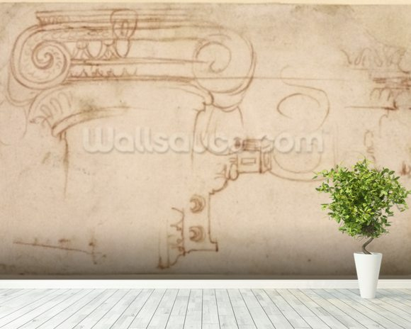 Study of an Ionic capital (red chalk on paper) (recto) mural wallpaper room setting
