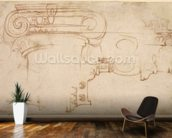 Study of an Ionic capital (red chalk on paper) (recto) mural wallpaper kitchen preview