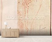 Study of Christs feet nailed to the Cross (red chalk on paper) (verso) mural wallpaper living room preview