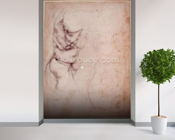 Study of torso and buttock (charcoal on paper) (recto) wall mural room setting