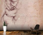 Study of torso and buttock (charcoal on paper) (recto) wall mural kitchen preview