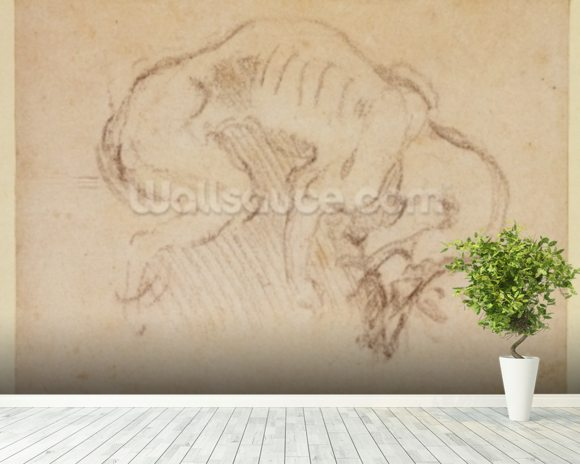 Study of a dog (charcoal on paper) (recto) wallpaper mural room setting